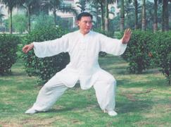 Meister Chen-Taijiquan Chen Shaolei 1