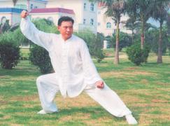 Meister Chen-Taijiquan Chen Shaolei 3